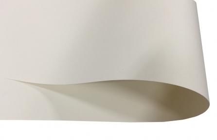 Арт.2580/0020 Дизайнерский картон Сover Board Classic, матовый шампань, 270 гр/м2