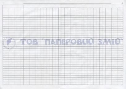 Пустографка горизонтальная, А3, 100 листов