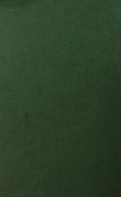 Арт.10209-11004 Дизайнерская бумага Hyacinth Inspiration зеленая, 110 гр/м2