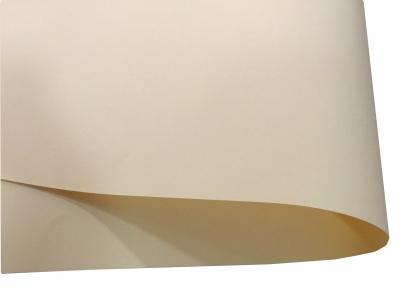 Арт.13101-12012 Дизайнерская бумага Hyacinth, ванильная, 120 гр/м2